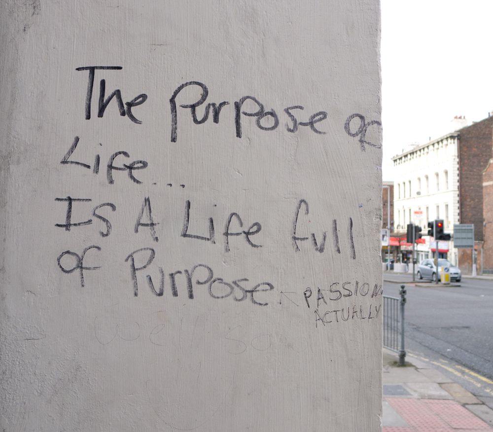 The Purpose of Life..Is a Life Full of Purpose