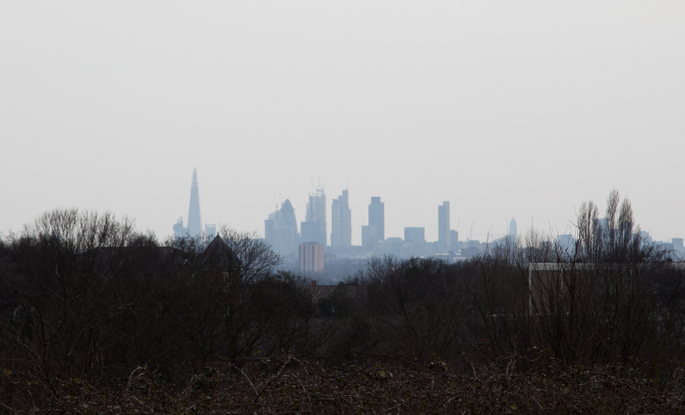 London From Epping Forest