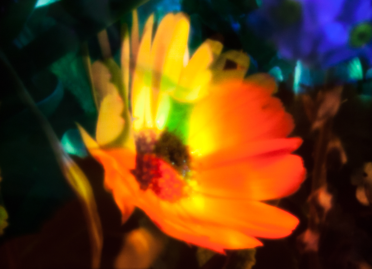 20140510-IMG_6449-Edit