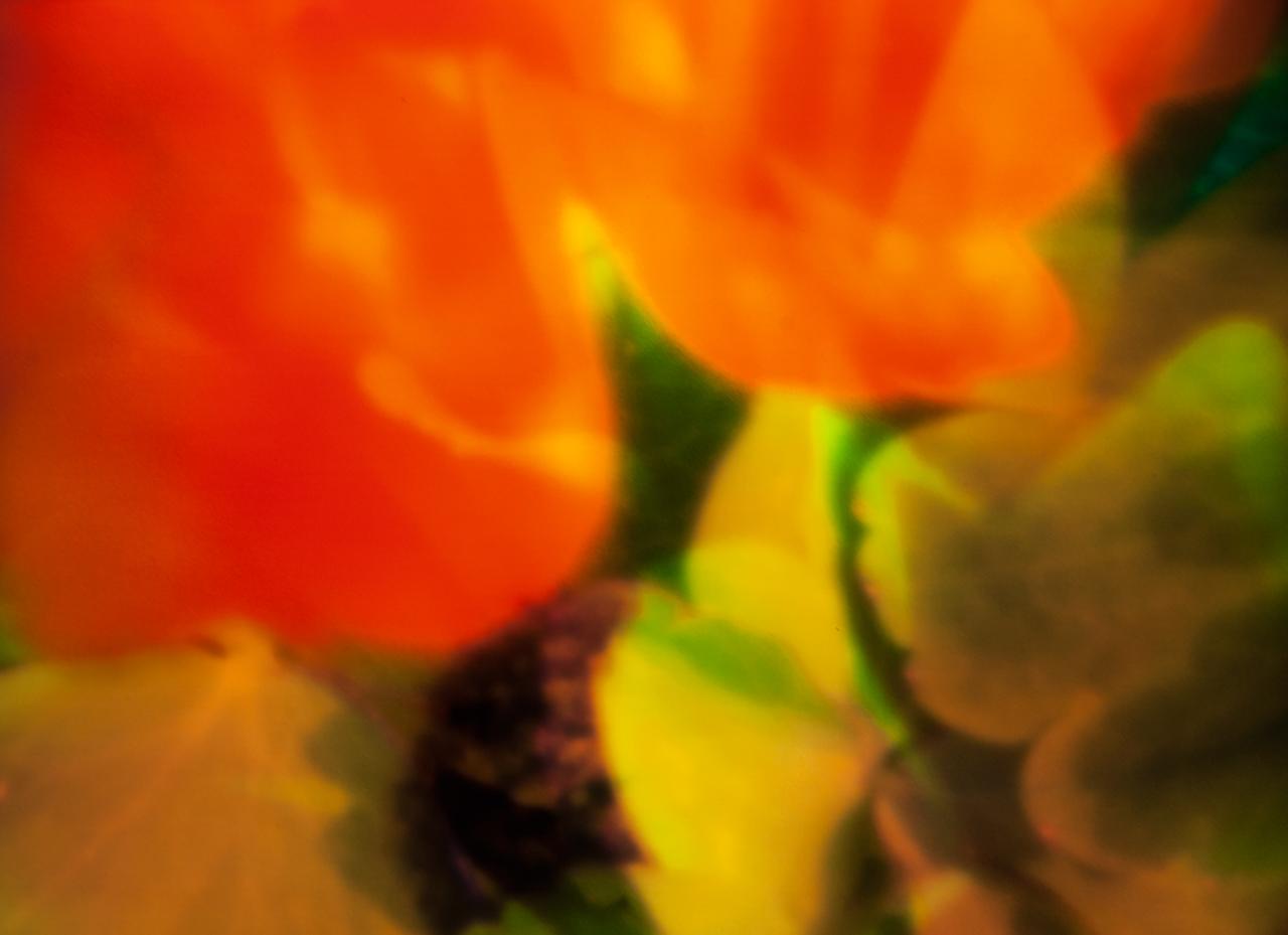 20140531-_MG_1140-Edit