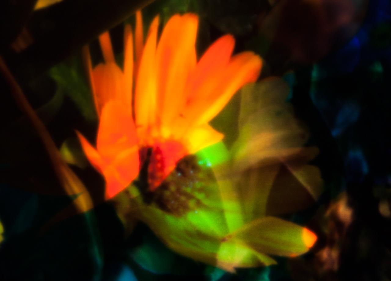 20140531-_MG_1171-Edit