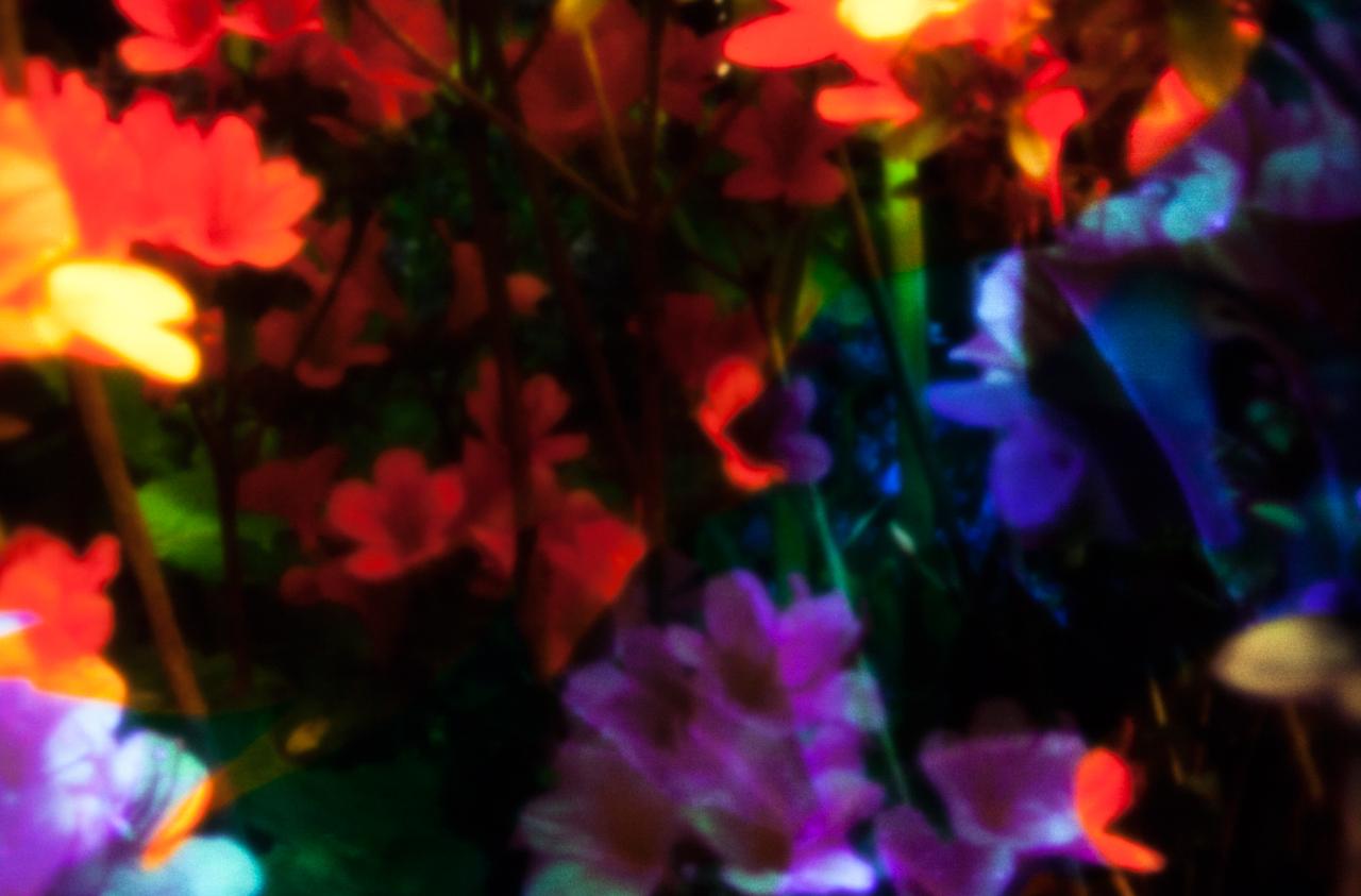 20140607-_MG_1827-Edit