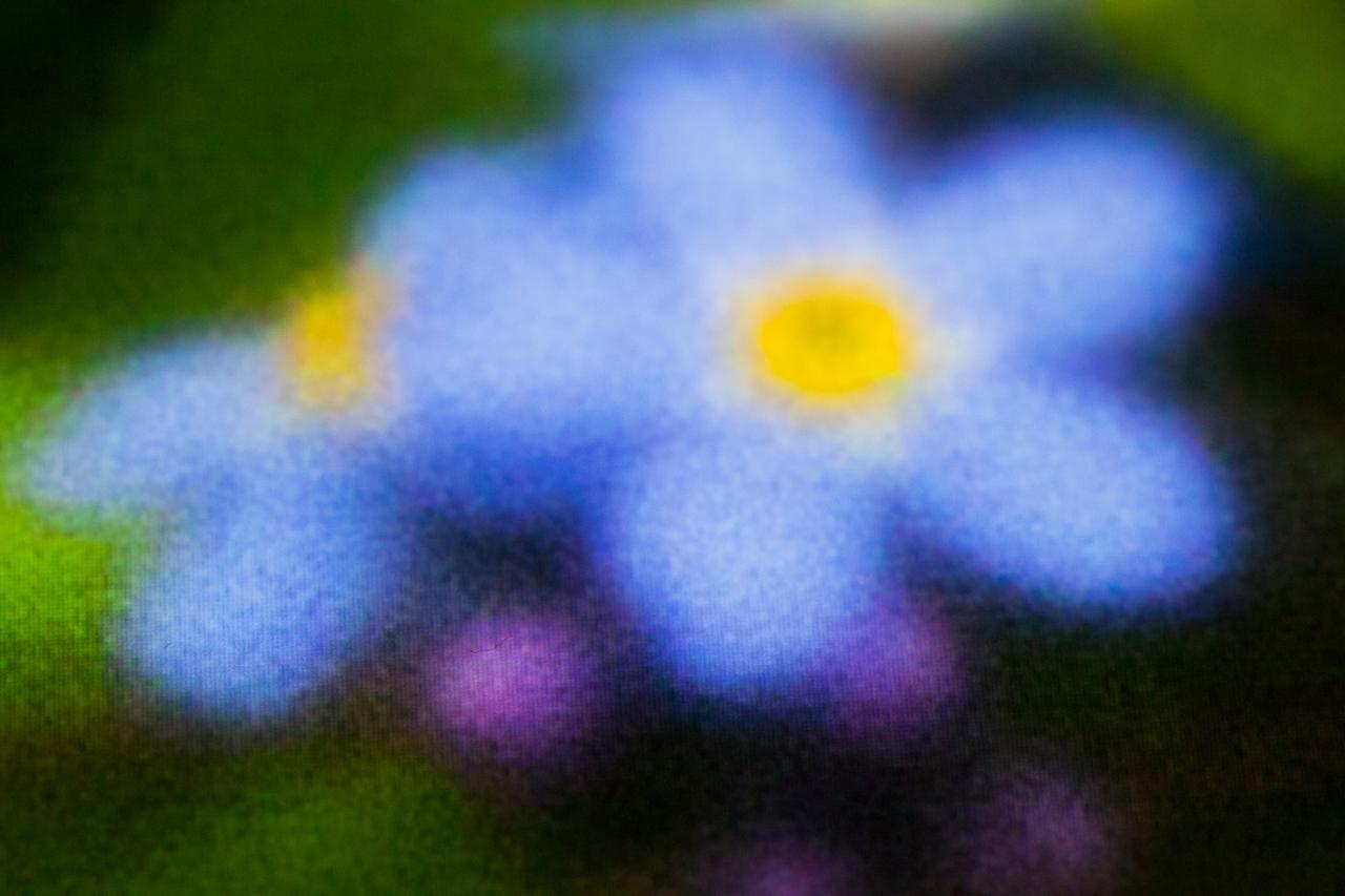 Secret Garden Revisited